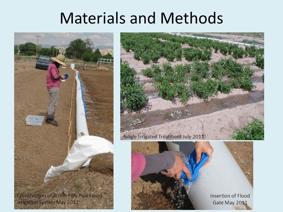 Materials and Methods Construction of Armin Poly Pipe Flood Irrigation System May 2011 Single Irrigated Treatment July 2011 Insertion of Flood Gate Ma