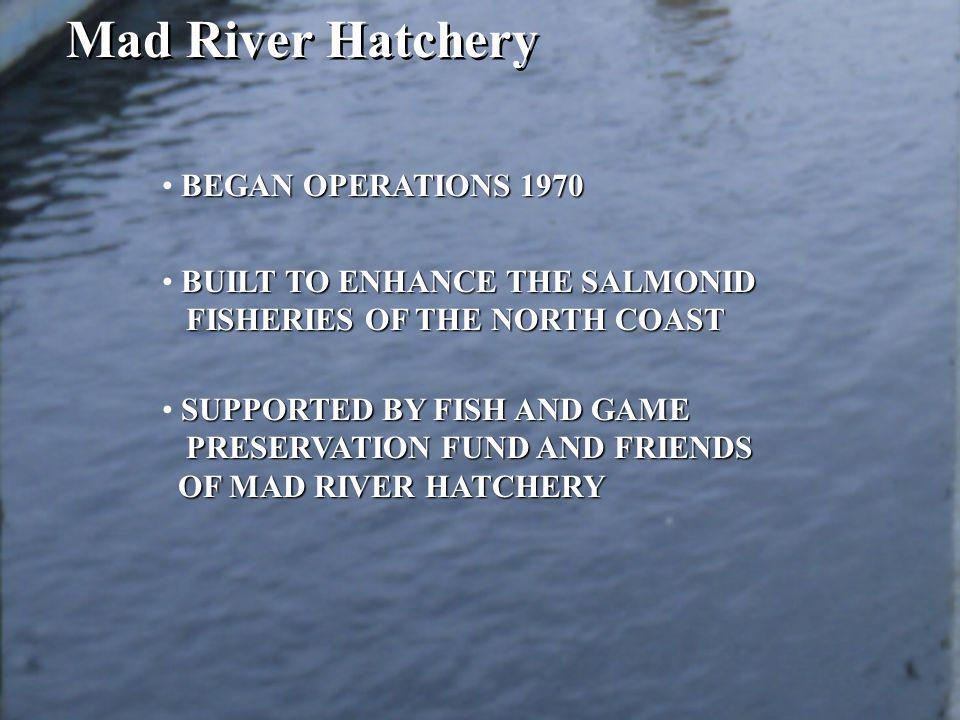 BEGAN OPERATIONS 1970 BUILT TO ENHANCE THE SALMONID FISHERIES OF THE NORTH COAST SUPPORTED BY FISH AND GAME PRESERVATION FUND AND FRIENDS OF MAD RIVER HATCHERY OF MAD RIVER HATCHERY Mad River Hatchery