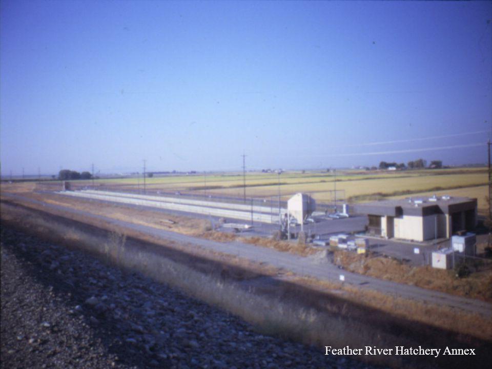 Feather River Hatchery Annex