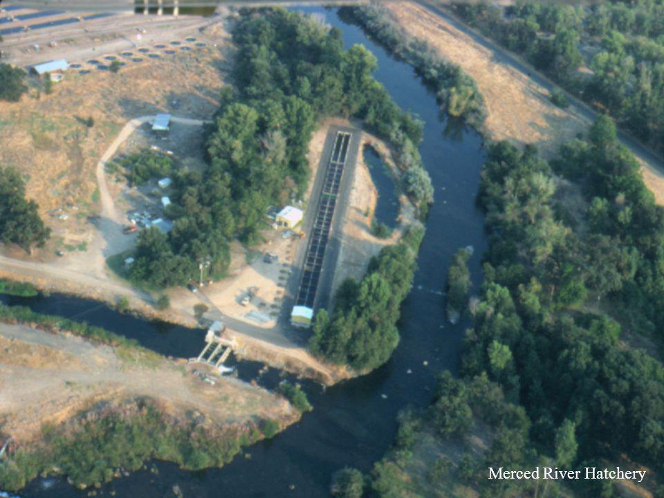 Merced River Hatchery