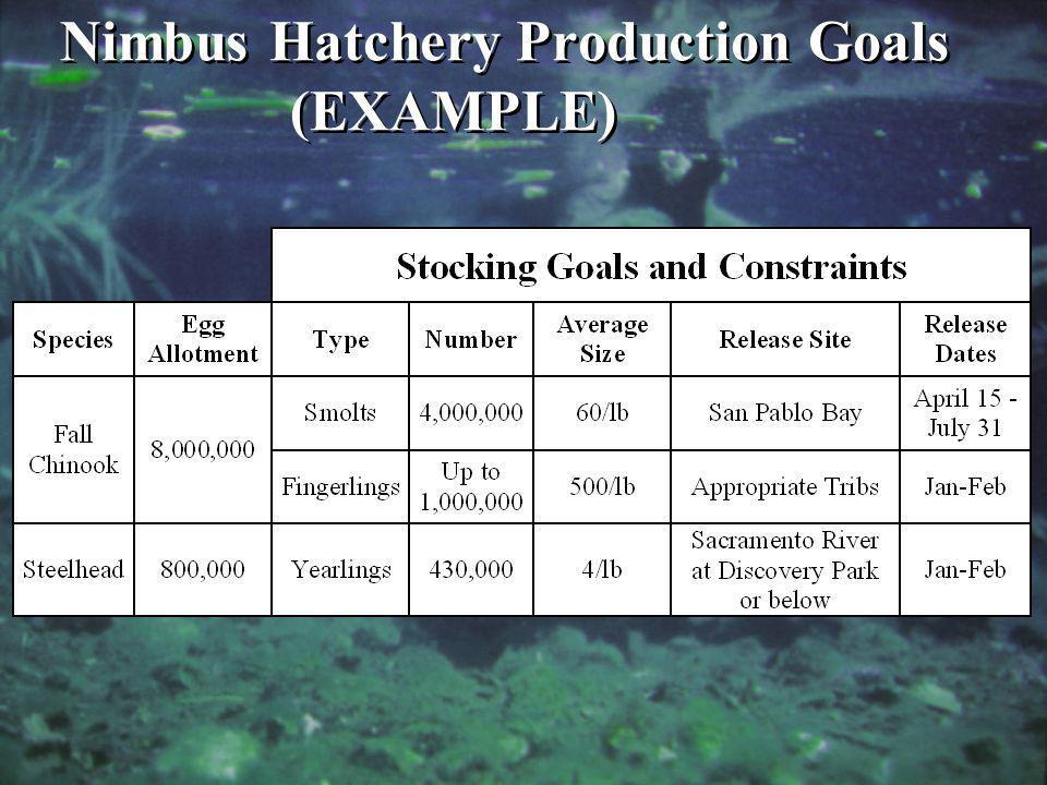 Nimbus Hatchery Production Goals (EXAMPLE)