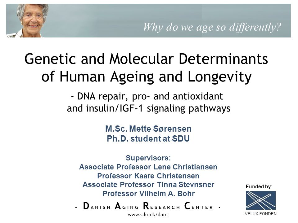 - D A N I S H A G I N G R E S E A R C H C E N T E R - www.sdu.dk/darc Genetic and Molecular Determinants of Human Ageing and Longevity - DNA repair, pro- and antioxidant and insulin/IGF-1 signaling pathways Why do we age so differently.