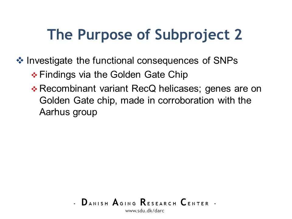 - D A N I S H A G I N G R E S E A R C H C E N T E R - www.sdu.dk/darc The Purpose of Subproject 2 Investigate the functional consequences of SNPs Findings via the Golden Gate Chip Recombinant variant RecQ helicases; genes are on Golden Gate chip, made in corroboration with the Aarhus group