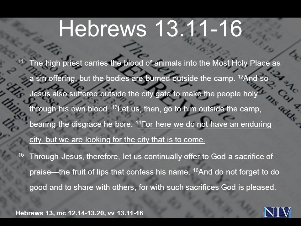 Hebrews 13.11-16 11 The high priest carries the blood of animals into the Most Holy Place as a sin offering, but the bodies are burned outside the camp.