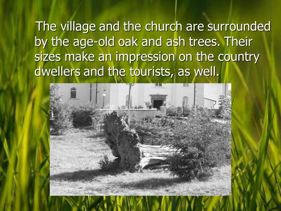 The village and the church are surrounded by the age-old oak and ash trees.