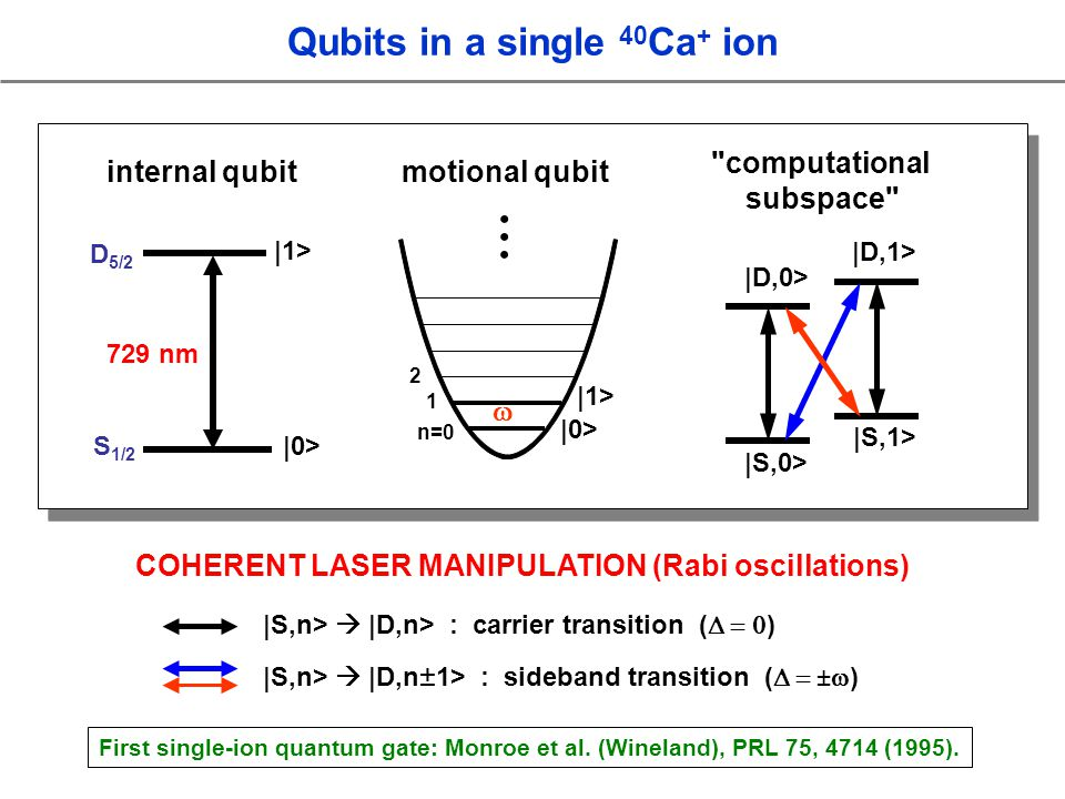 D 5/2 729 nm |1> |0> internal qubit Qubits in a single 40 Ca + ion S 1/2 motional qubit |0> |1> 1 n=0 2 |S,n> |D,n> : carrier transition ( ) |S,n> |D,n ± 1> : sideband transition ( ) computational subspace |S,0> |D,0> |D,1> |S,1> COHERENT LASER MANIPULATION (Rabi oscillations) First single-ion quantum gate: Monroe et al.