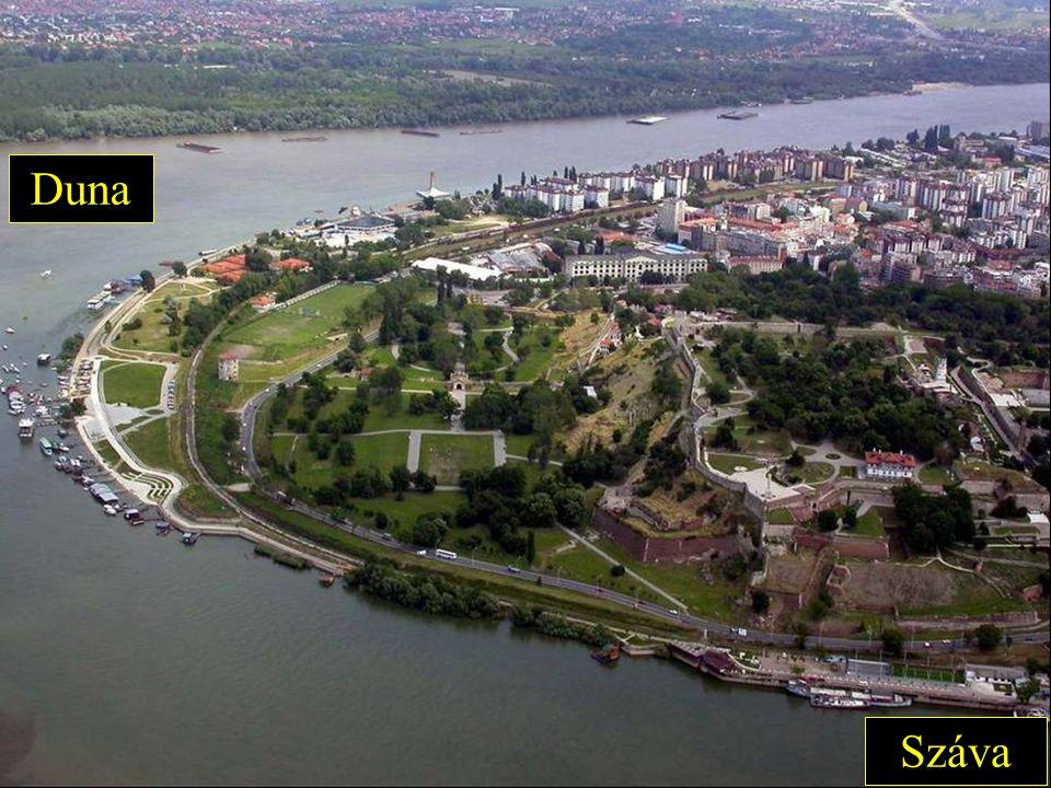 Száva Duna