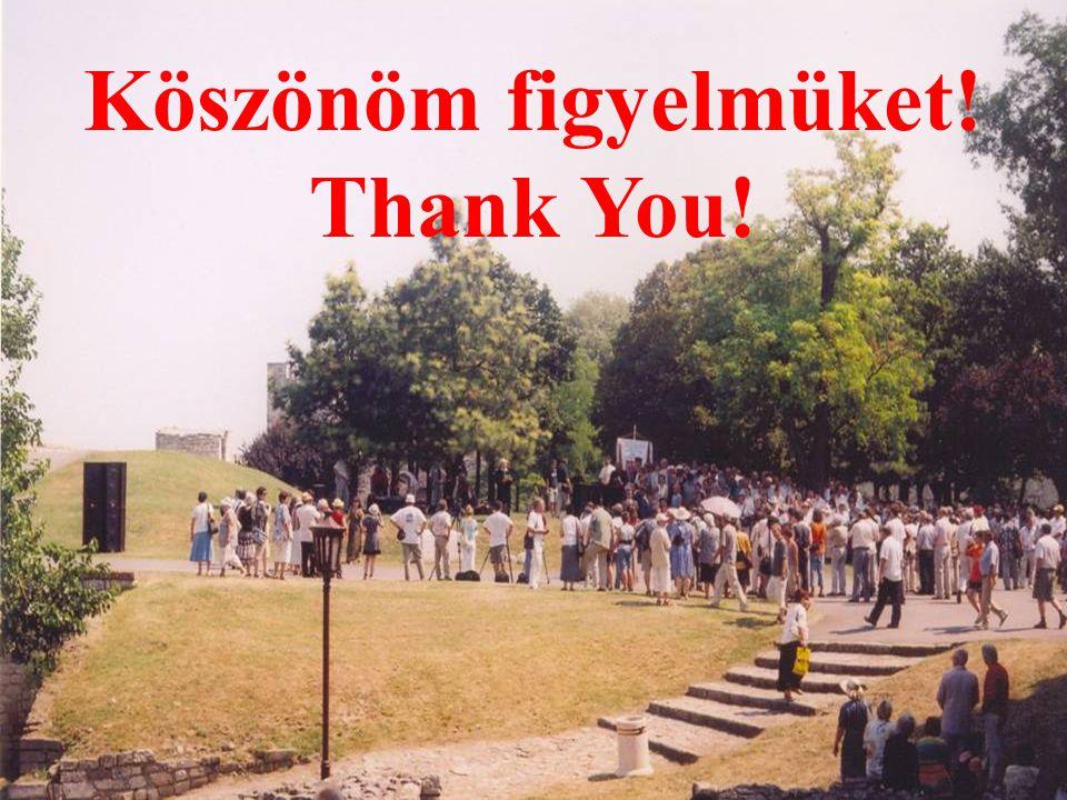 Köszönöm figyelmüket! Thank You!