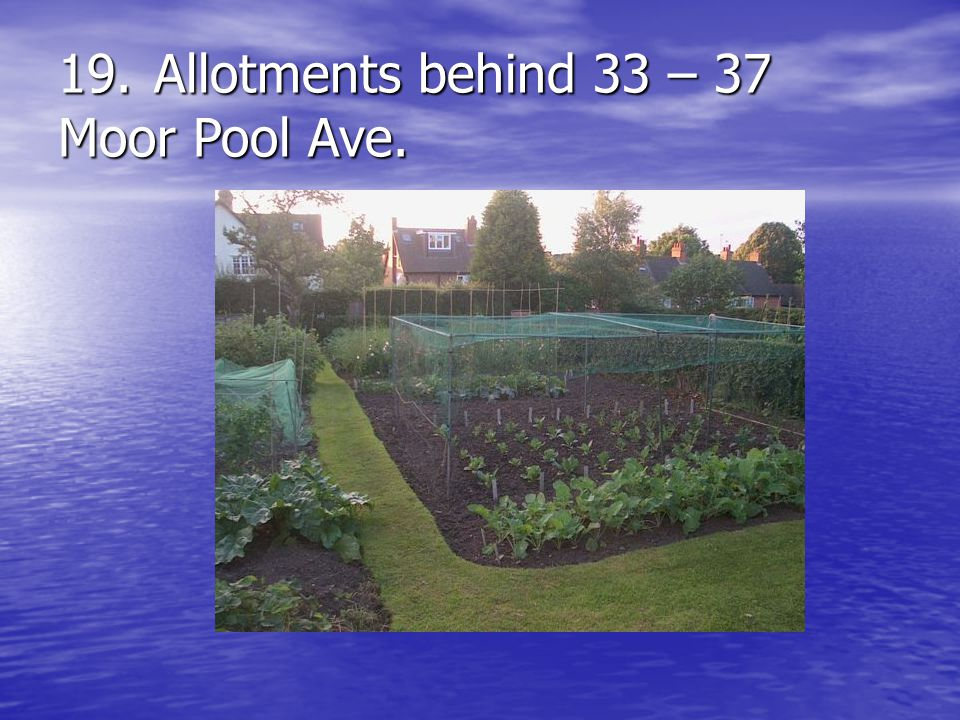19.Allotments behind 33 – 37 Moor Pool Ave.