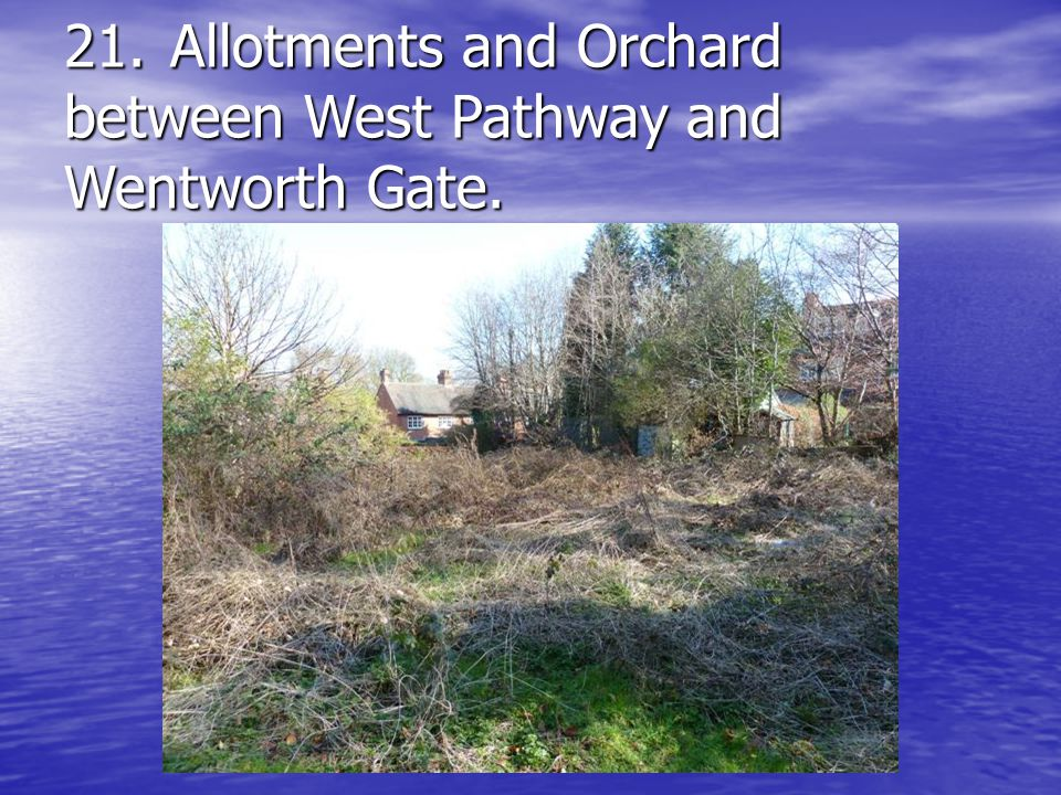 21.Allotments and Orchard between West Pathway and Wentworth Gate.