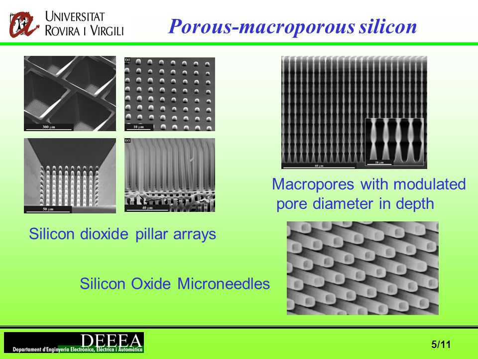 5/11 Porous-macroporous silicon Silicon dioxide pillar arrays Macropores with modulated pore diameter in depth Silicon Oxide Microneedles