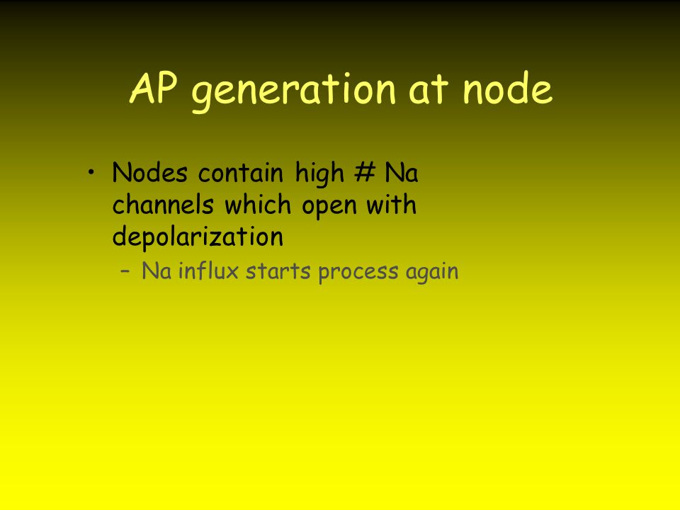 AP generation at node Nodes contain high # Na channels which open with depolarization –Na influx starts process again