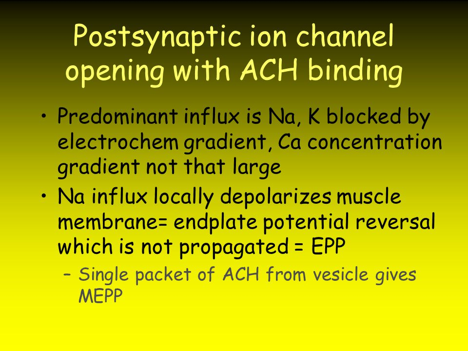 Postsynaptic ion channel opening with ACH binding Predominant influx is Na, K blocked by electrochem gradient, Ca concentration gradient not that larg