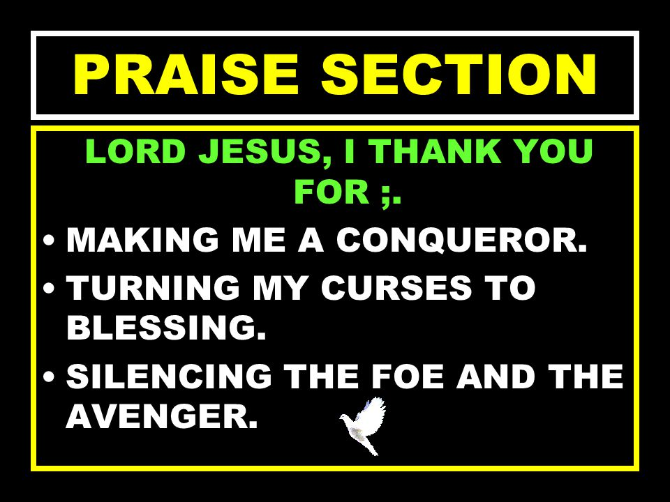 LORD JESUS, I THANK YOU FOR ; SALVATION OF MY SOUL. BAPTIZING ME WITH THE HOLY GHOST. YOUR DIVINE PLAN FOR MY LIFE. PRAISE SECTION