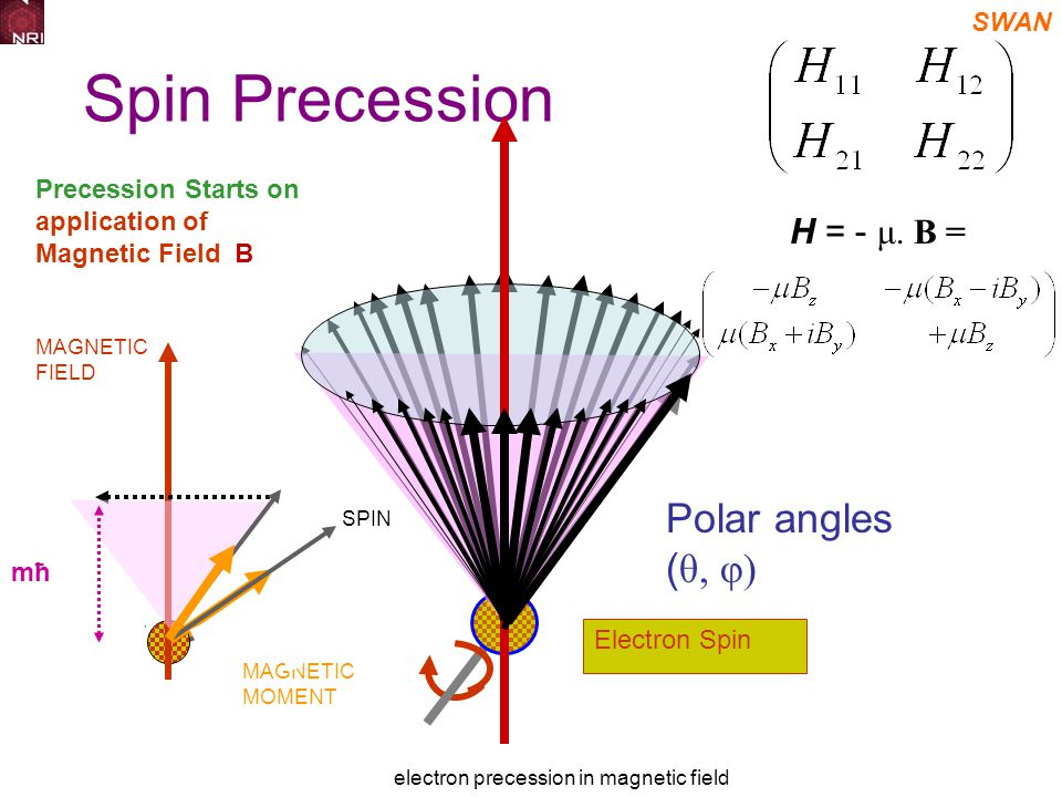 SWAN electron precession in magnetic field Spin Precession Starts on application of Magnetic Field B Electron Spin SPIN MAGNETIC MOMENT MAGNETIC FIELD μ X H mħ Polar angles ( θ, φ) H = - μ.