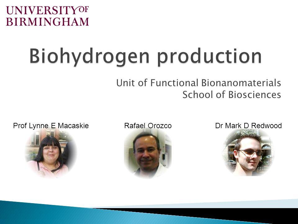 Unit of Functional Bionanomaterials School of Biosciences Prof Lynne E MacaskieRafael OrozcoDr Mark D Redwood