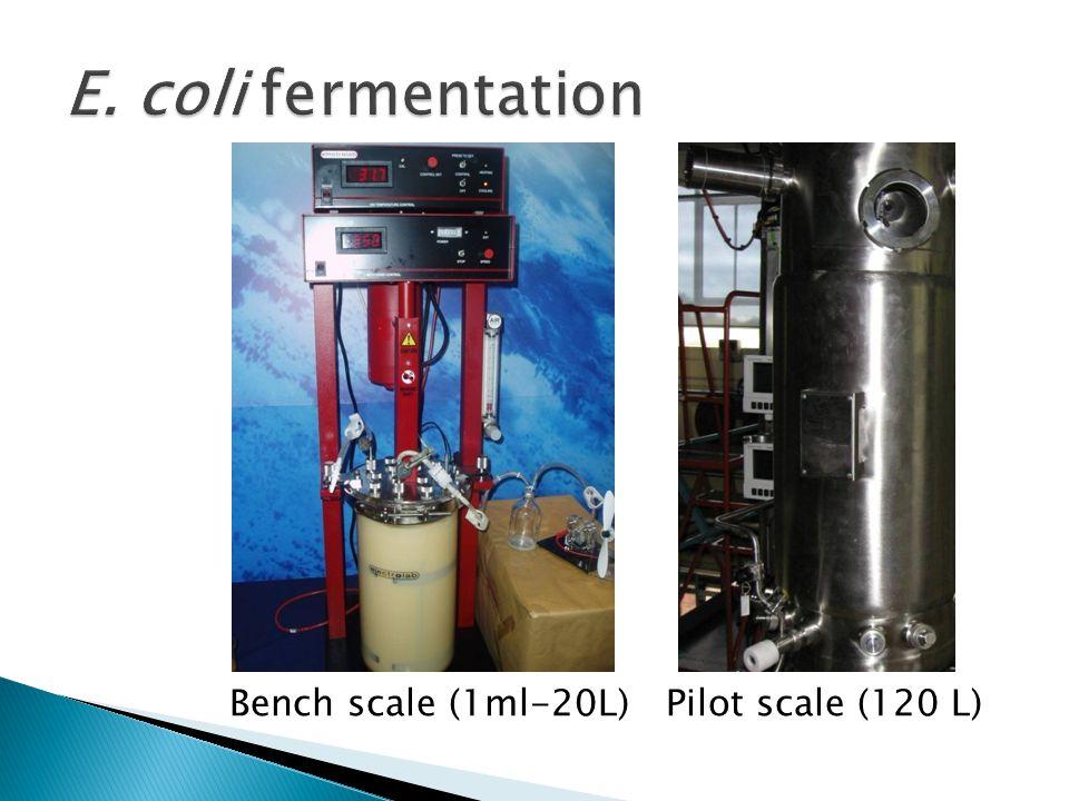 Bench scale (1ml-20L) Pilot scale (120 L)