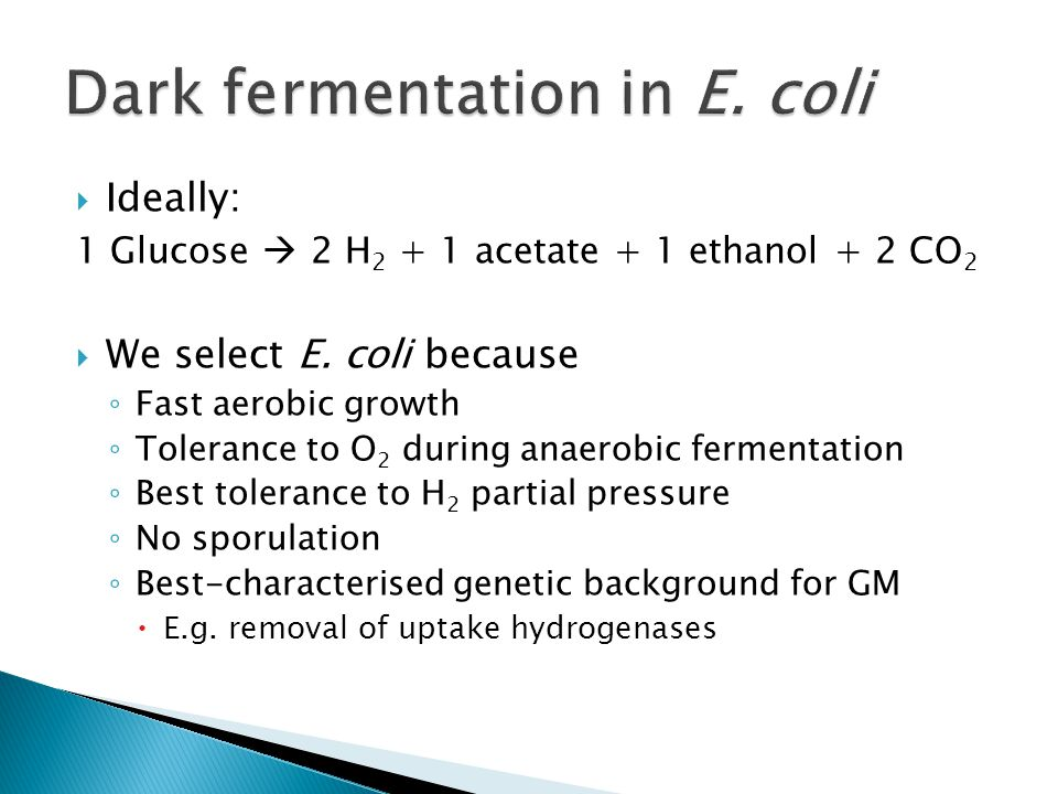 Ideally: 1 Glucose 2 H 2 + 1 acetate + 1 ethanol + 2 CO 2 We select E. coli because Fast aerobic growth Tolerance to O 2 during anaerobic fermentation