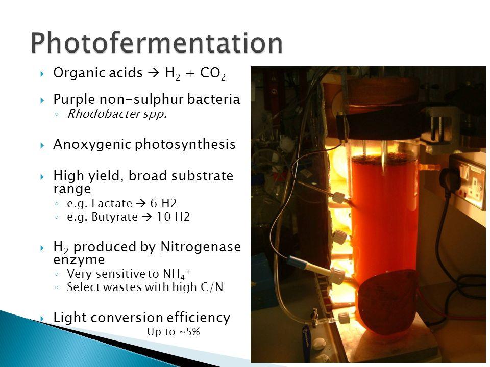 Logging equipment for light intensity and temperature.