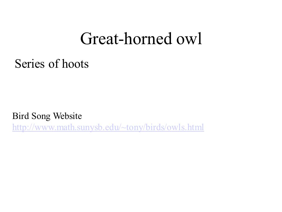 Great-horned owl Series of hoots Bird Song Website http://www.math.sunysb.edu/~tony/birds/owls.html