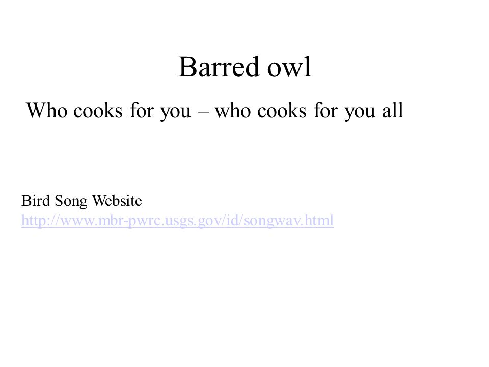 Barred owl Who cooks for you – who cooks for you all Bird Song Website http://www.mbr-pwrc.usgs.gov/id/songwav.html