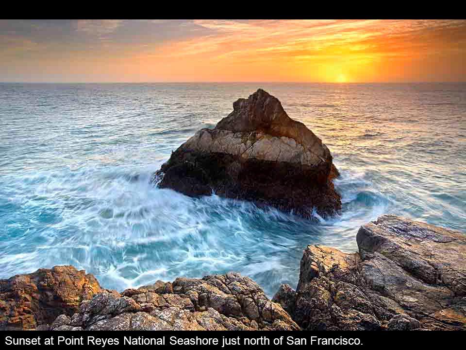 Sunset at Point Reyes National Seashore just north of San Francisco.