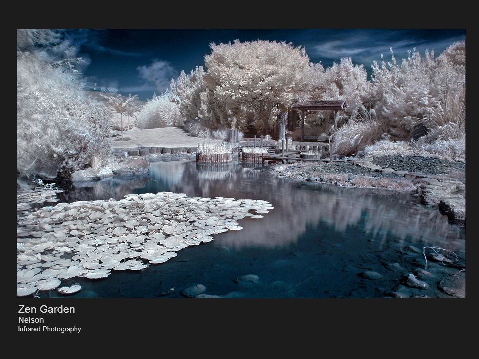 Zen Garden Nelson Infrared Photography