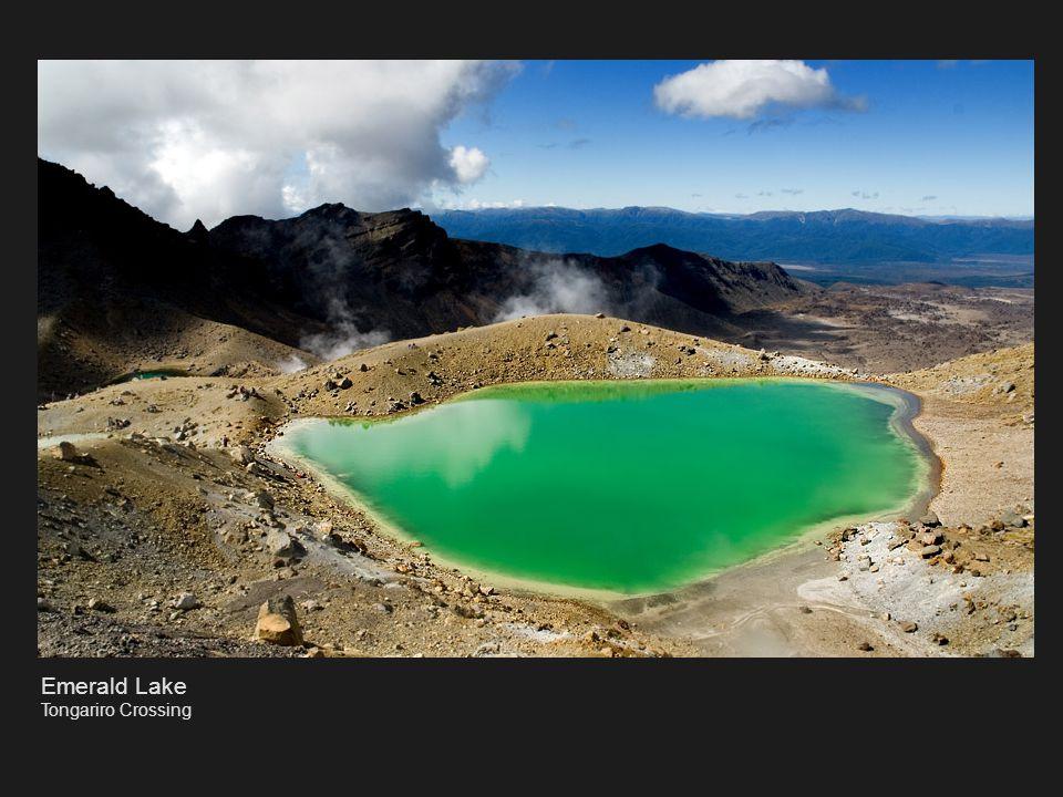 Hells Gate Rotorua