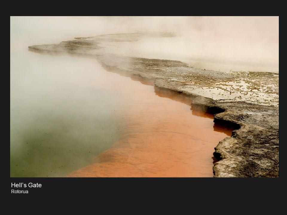 Yin & Yang Nelson Infrared Photography
