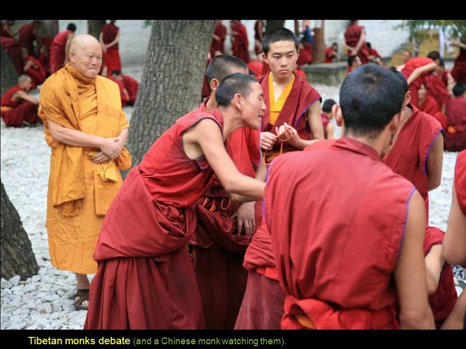 Tibetan monks debate at the Sera Monastery.