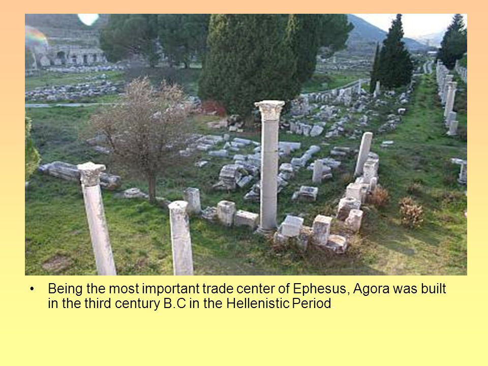 Being the most important trade center of Ephesus, Agora was built in the third century B.C in the Hellenistic Period.