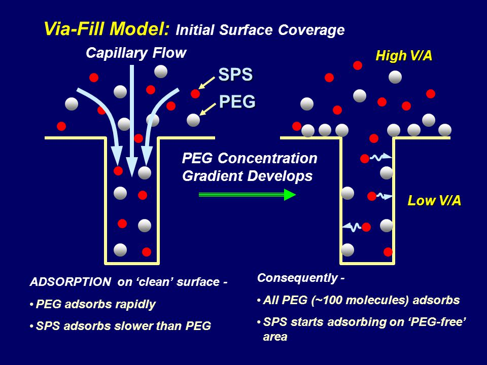 Via-Fill Model: Initial Surface Coverage Capillary Flow ADSORPTION on clean surface - PEG adsorbs rapidly SPS adsorbs slower than PEG SPS PEG Consequently - All PEG (~100 molecules) adsorbs SPS starts adsorbing on PEG-free area PEG Concentration Gradient Develops Low V/A High V/A