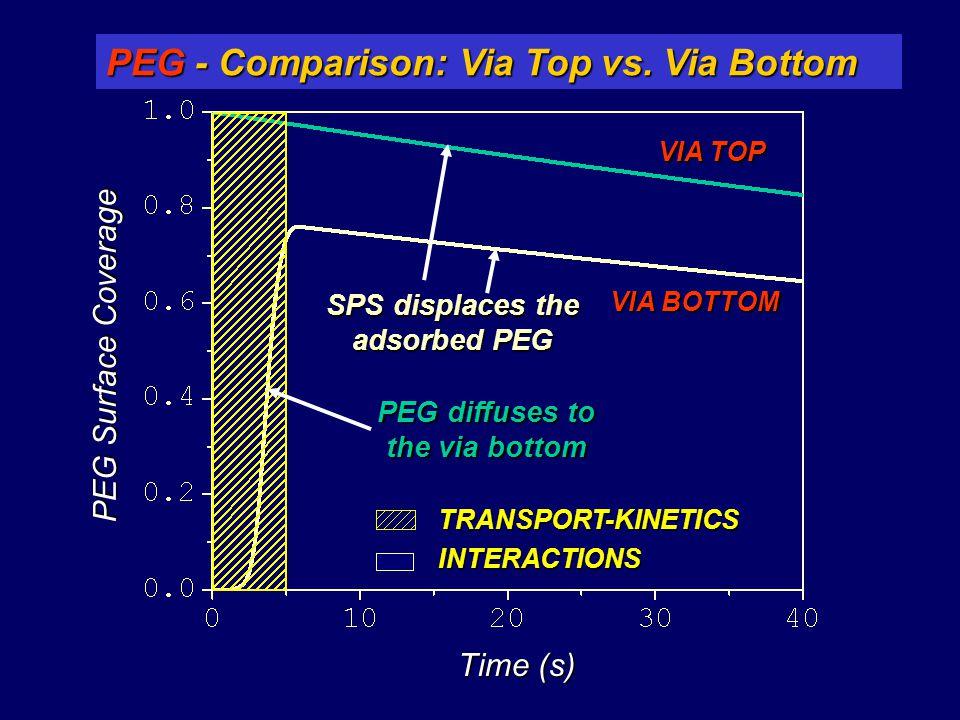 PEG Surface Coverage Time (s) VIA TOP VIA BOTTOM PEG - Comparison: Via Top vs. Via Bottom INTERACTIONS TRANSPORT-KINETICS PEG diffuses to the via bott