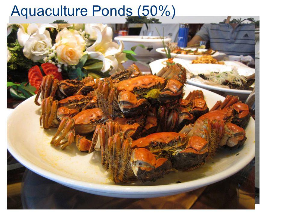 Aquaculture Ponds (50%)