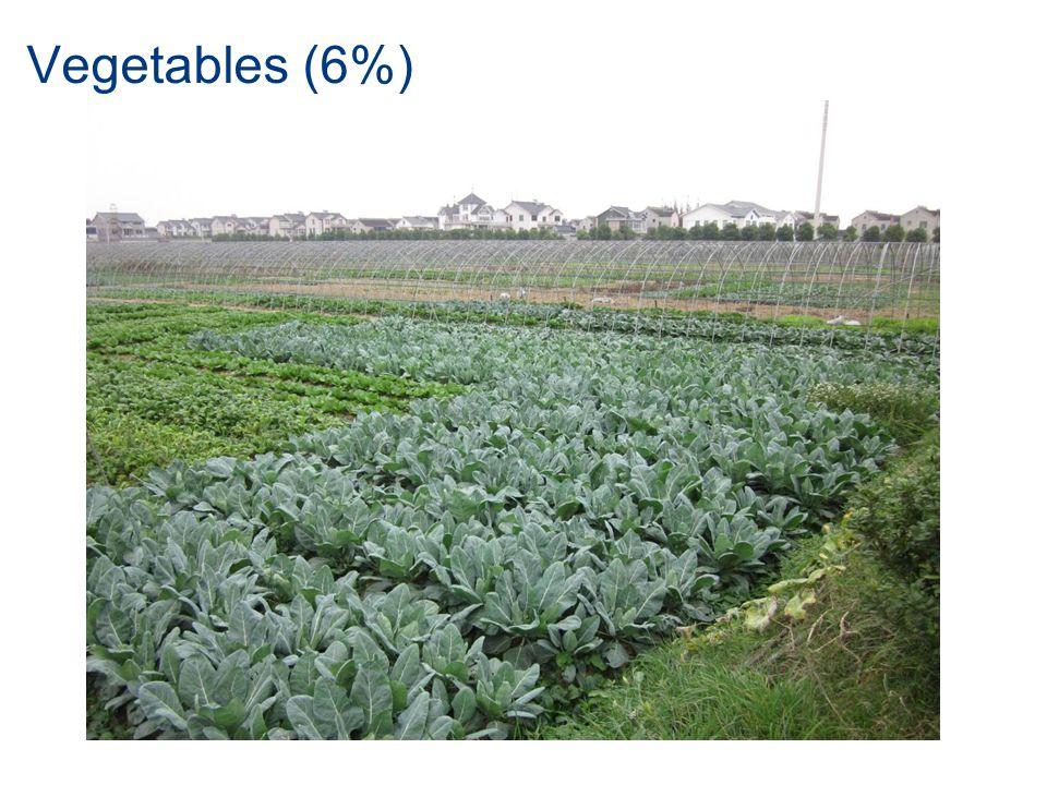Vegetables (6%)