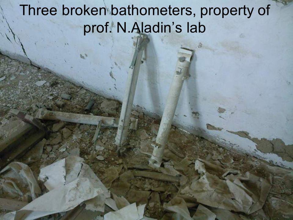 Three broken bathometers, property of prof. N.Aladins lab
