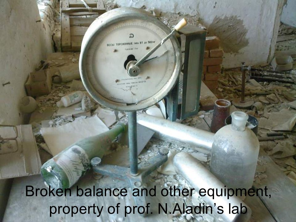 Broken balance and other equipment, property of prof. N.Aladins lab