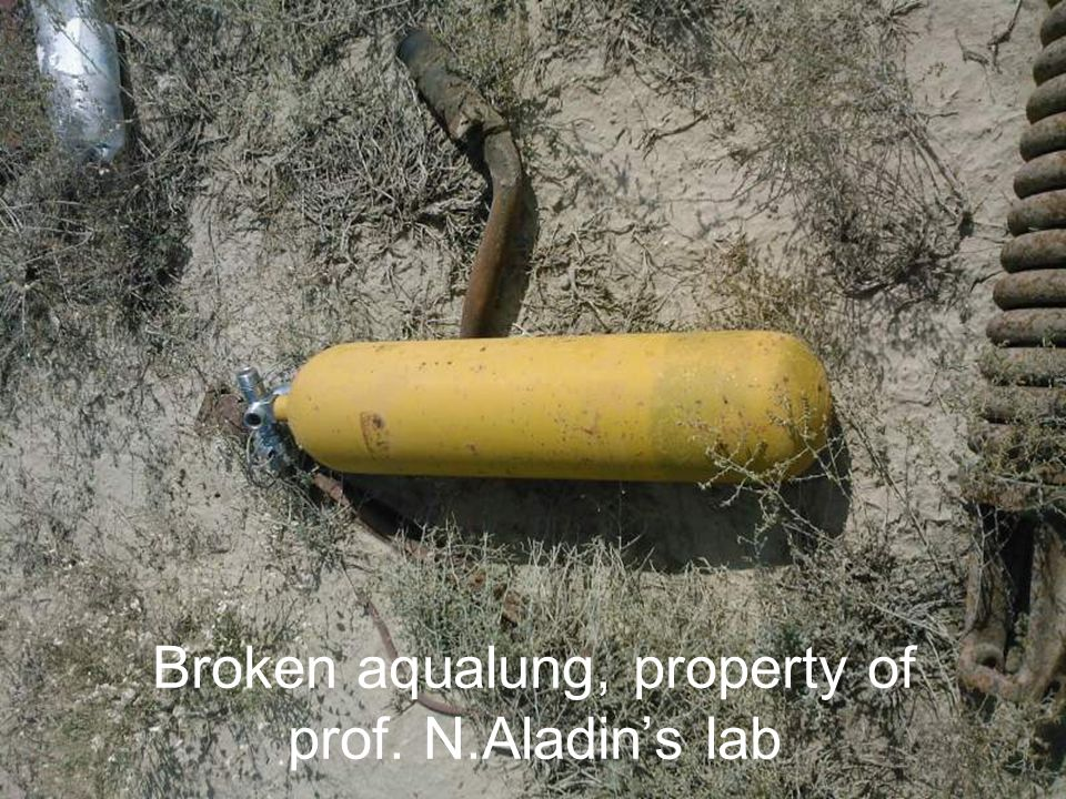 Broken aqualung, property of prof. N.Aladins lab