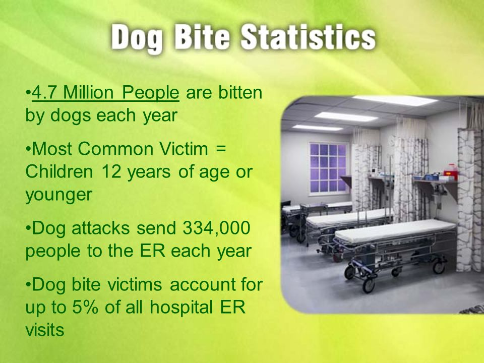 4.7 Million People are bitten by dogs each year Most Common Victim = Children 12 years of age or younger Dog attacks send 334,000 people to the ER each year Dog bite victims account for up to 5% of all hospital ER visits
