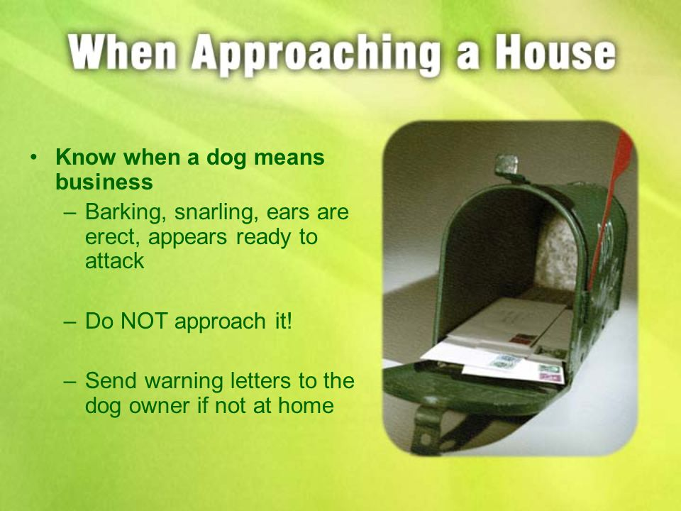 Know when a dog means business –Barking, snarling, ears are erect, appears ready to attack –Do NOT approach it.