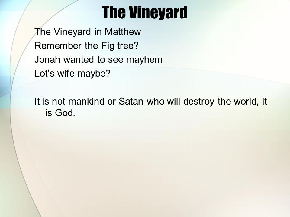 The Vineyard The Vineyard in Matthew Remember the Fig tree.