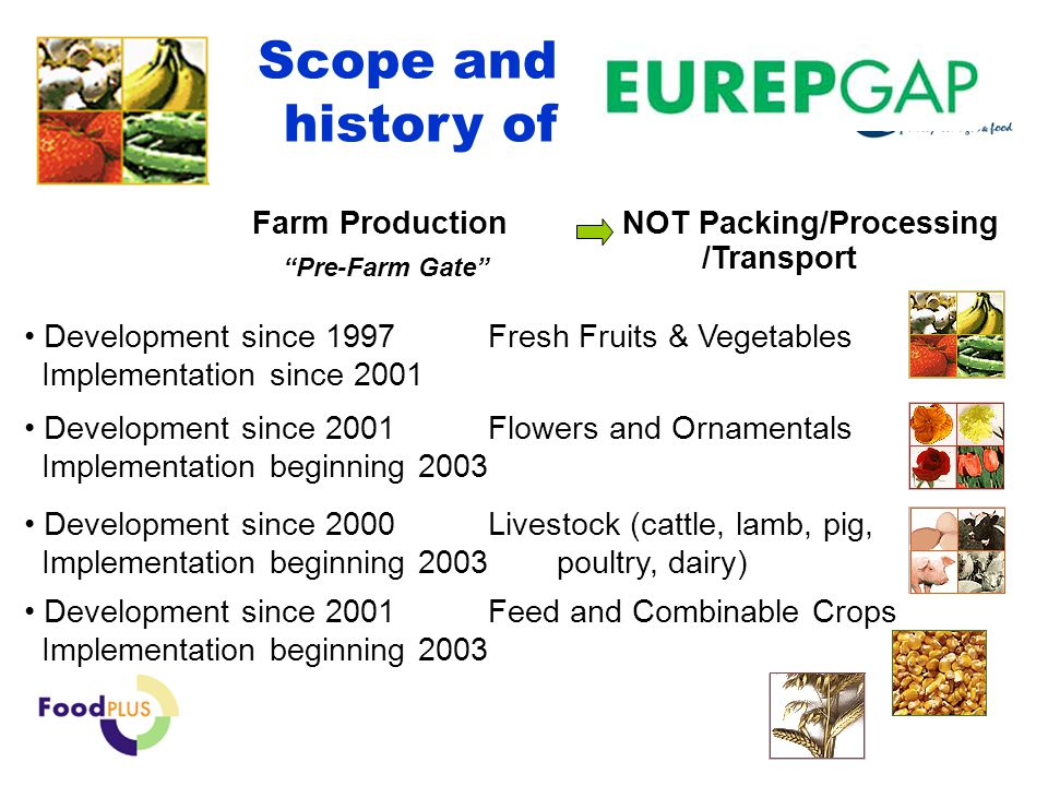 © Q-Point BV Development since 2000 Livestock (cattle, lamb, pig, Implementation beginning 2003 poultry, dairy) Development since 2001 Feed and Combinable Crops Implementation beginning 2003 Scope and history of Development since 1997 Fresh Fruits & Vegetables Implementation since 2001 Farm ProductionPre-Farm Gate NOT Packing/Processing /Transport Development since 2001 Flowers and Ornamentals Implementation beginning 2003