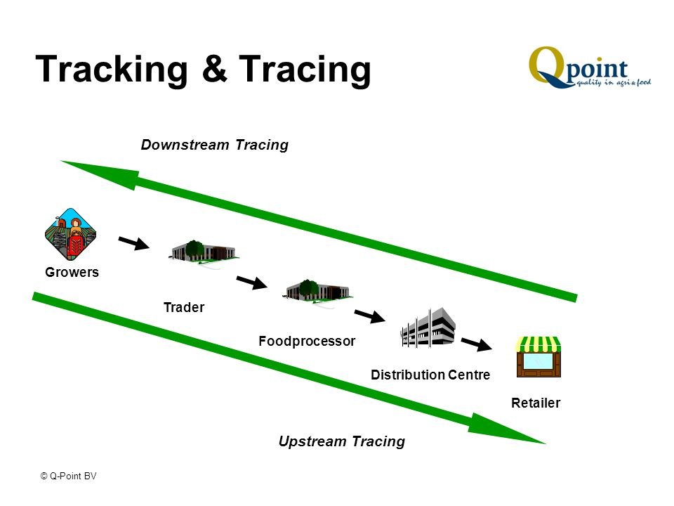© Q-Point BV Tracking & Tracing Downstream Tracing Growers Trader Distribution Centre Retailer Foodprocessor Upstream Tracing