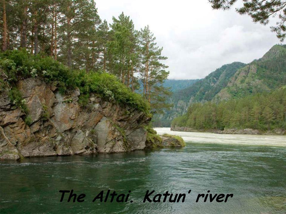 The Altai. Katun river
