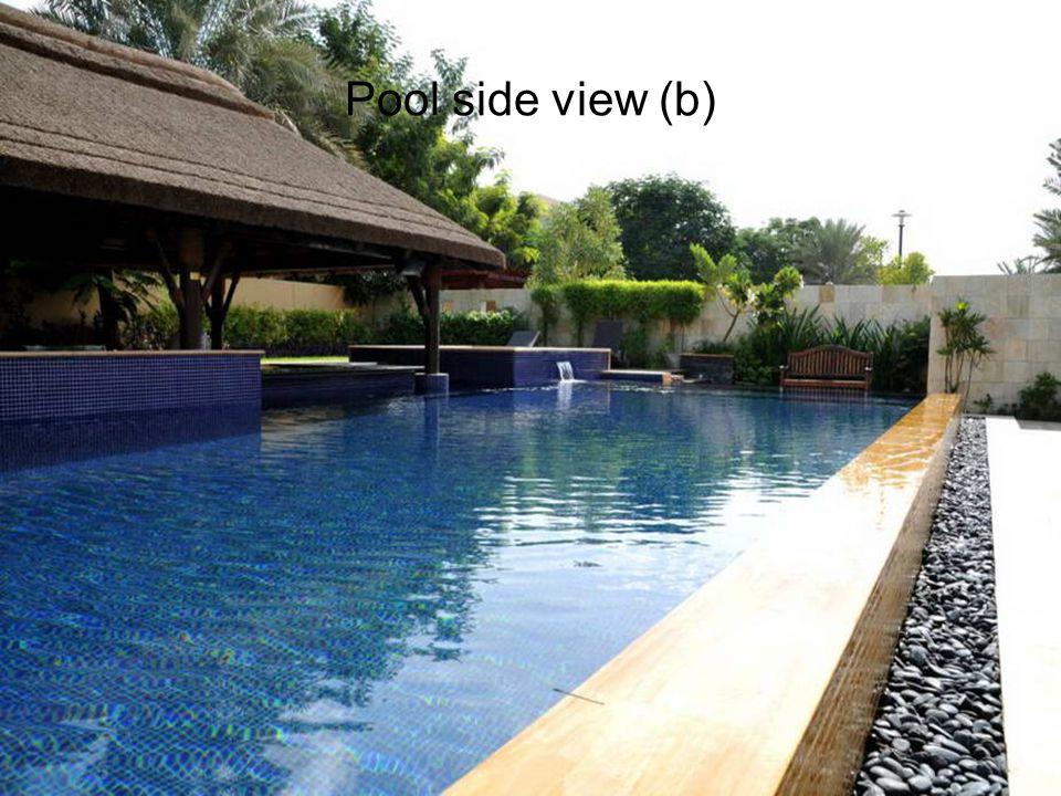 Pool side view (b)