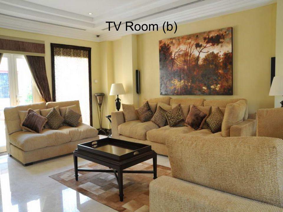 TV Room (b)