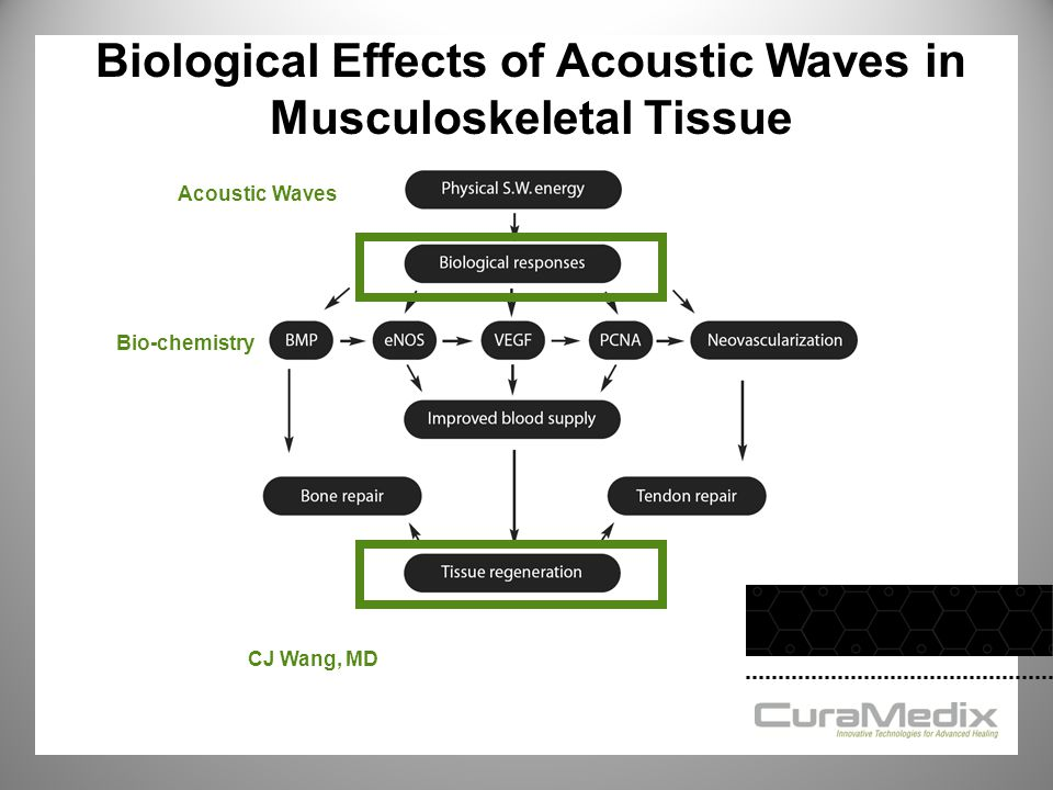 Acoustic Waves Bio-chemistry CJ Wang, MD Biological Effects of Acoustic Waves in Musculoskeletal Tissue