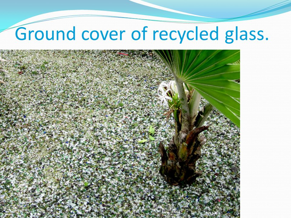 Ground cover of recycled glass.