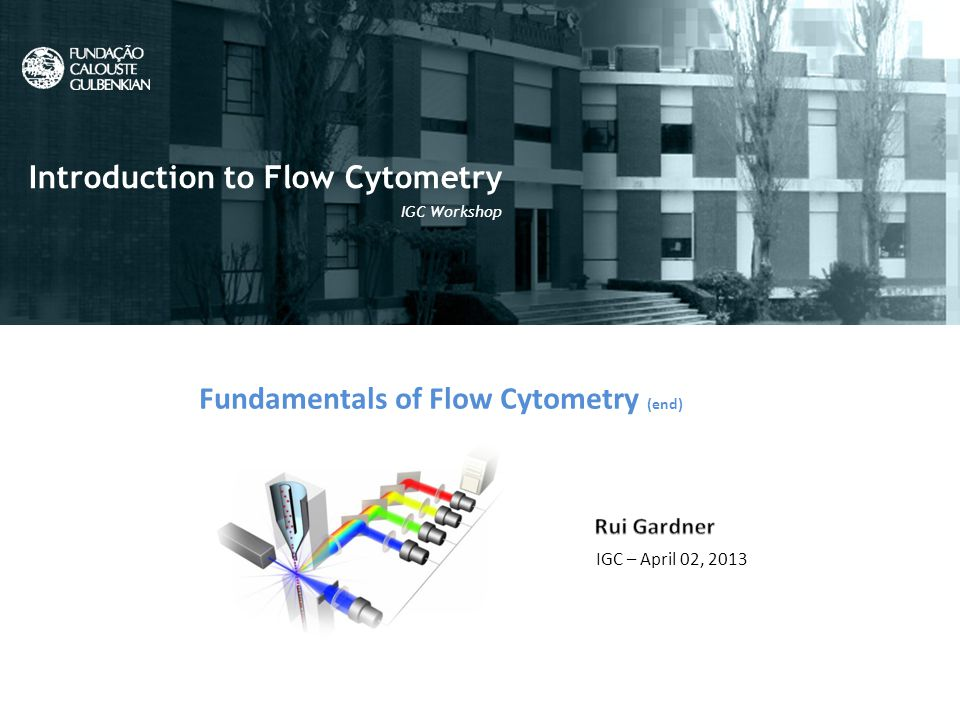 Fundamentals of Flow Cytometry (end) IGC – April 02, 2013 Introduction to Flow Cytometry IGC Workshop