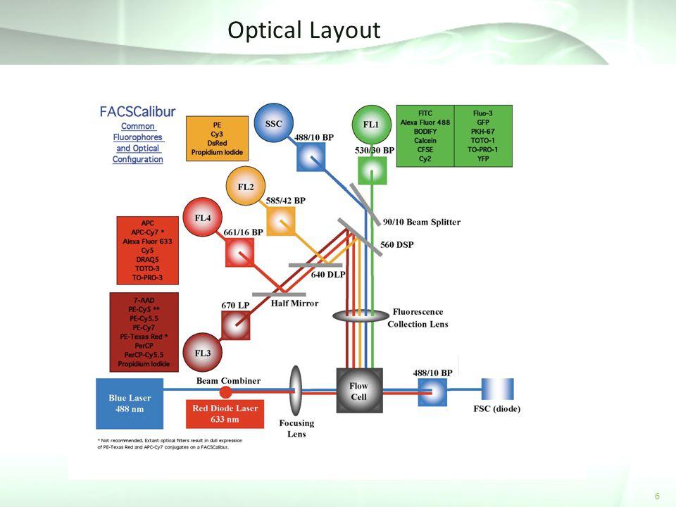 Optical Layout 6